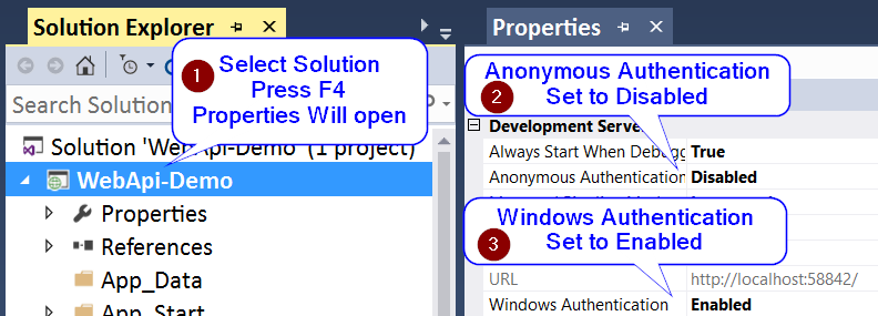 VS Solution Properties Set Dev Server Authentication Options